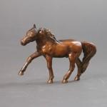 Little Arabian Stallion